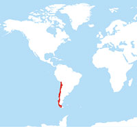 Map location of Chile